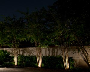 Low voltage landscape lighting is simple yet beautiful.